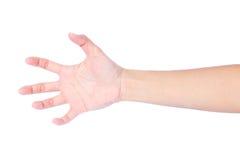 Vrouwelijke lege open hand Stock Afbeeldingen