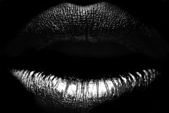 Vrouwelijke lippenclose-up Stock Fotografie