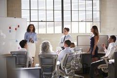 Vrouwelijke manager en collega's op een uitwisselings van ideeënvergadering stock foto's