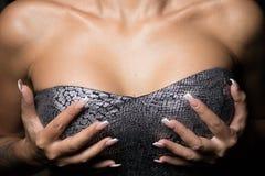 Vrouwelijke mooie sexy lichaamsborst stock fotografie