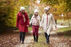 Vrouwelijke Multl-Generatiefamilie die langs Autumn Path lopen Royalty-vrije Stock Afbeeldingen