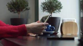 Vrouwelijke onderzoeken naar informatie over Internet stock videobeelden