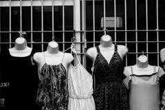 Vrouwelijke organismen en hun blootstelling aan geweld stock afbeelding