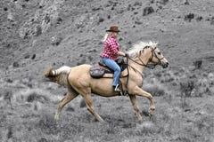 Vrouwelijke paardruiter royalty-vrije stock afbeeldingen