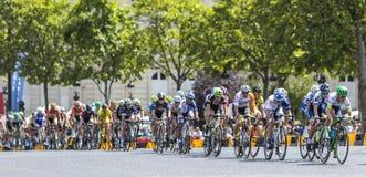 Vrouwelijke Peloton in Parijs - La-Cursus door Le-Ronde van Frankrijk 2 Stock Afbeelding
