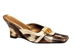 Vrouwelijke schoen. Royalty-vrije Stock Foto