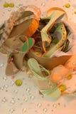 Vrouwelijke schoenen Stock Afbeelding