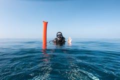 Vrouwelijke scuba-duiker met de boei van de oppervlakteteller Stock Foto's