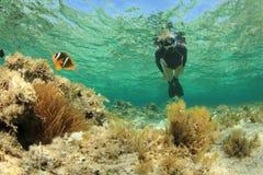 Vrouwelijke Snorkeler Stock Foto
