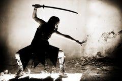 Vrouwelijke strijder Stock Afbeeldingen