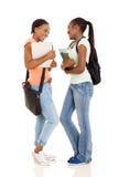 Vrouwelijke Studenten stock fotografie