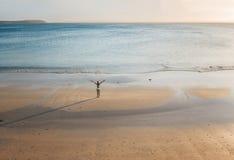 Vrouwelijke tribunes op een afgezonderd strand bij zonsondergang stock foto