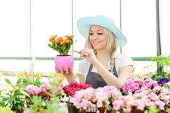 Vrouwelijke tuinman die bloem onderzoekt Royalty-vrije Stock Foto's