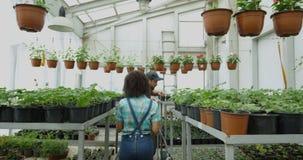 Vrouwelijke tuinman die foto in serre nemen stock footage