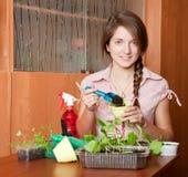 Vrouwelijke tuinman met zaailing Stock Afbeeldingen