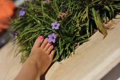 Vrouwelijke voet Stock Foto's