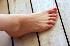 Vrouwelijke voet Royalty-vrije Stock Foto's