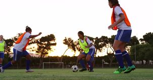 Vrouwelijke voetballer die onderaan een andere speler op voetbalgebied proberen aan te pakken 4K stock footage