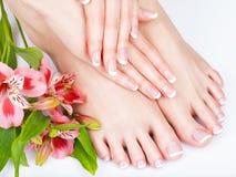 Vrouwelijke voeten bij kuuroordsalon op pedicure en manicureprocedure Royalty-vrije Stock Fotografie