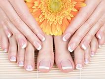 Vrouwelijke voeten bij kuuroordsalon op pedicure en manicureprocedure Stock Foto