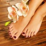 Vrouwelijke voeten bij kuuroordsalon op pedicureprocedure Royalty-vrije Stock Foto's