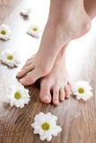 Vrouwelijke voeten op de donkere vloerplank Royalty-vrije Stock Fotografie