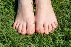 Vrouwelijke voeten op groen gras met rode spijkers Stock Afbeeldingen