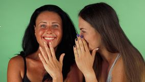 Vrouwelijke vrienden die op groene chromakeyachtergrond roddelen stock video