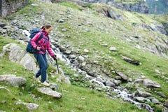 Vrouwelijke wandelaar in de bergen van Roemenië Stock Afbeelding