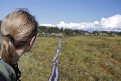 Vrouwelijke Wandelaar in de wildernis van Noorwegen Royalty-vrije Stock Foto