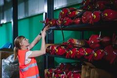 Vrouwelijke werknemer op bierfabriek portretvrouw in robe, die zich bij de productie van het achtergrondlijnvoedsel, de controle  Royalty-vrije Stock Foto's