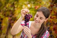 Vrouwelijke wijnhandelaar het inspecteren druiven royalty-vrije stock afbeelding