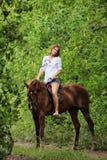 Vrouwen berijdende horseback door bos Royalty-vrije Stock Afbeelding
