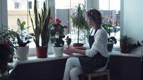 Vrouwen bespuitende bloemen op het venster stock video
