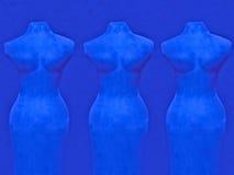 Vrouwen in blauw Stock Foto's