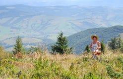Vrouwen die bessen in de bergen verzamelen Stock Fotografie