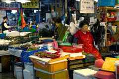 Vrouwen die bij haar tribune bij de vissenmarkt slapen royalty-vrije stock foto's
