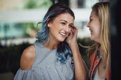 Vrouwen die bij Sociale Gebeurtenis babbelen royalty-vrije stock foto