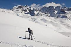 Vrouwen die in de sneeuw lopen Stock Foto's