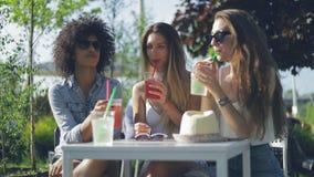Vrouwen die dranken in de zomerdag hebben stock videobeelden