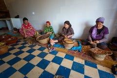 Vrouwen die in een coöperatieve vereniging voor de productie van argan Fr werken stock foto's