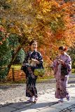 Vrouwen die Japanse traditionele kleren dragen stock foto