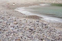Vrouwen die langs het strand met haar hond lopen Royalty-vrije Stock Fotografie