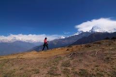 Vrouwen die met de trekkingsstokken van de rugzakholding hoog wandelen die in de bergen met sneeuw in de zomer worden behandeld Stock Foto's