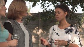 Vrouwen die op familiepartij spreken stock video