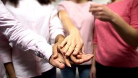 Vrouwen die in roze overhemden handen samenbrengen, steun, gendergelijkheid, feminisme stock afbeeldingen