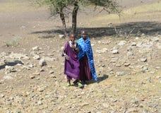 Vrouwen die tot stammen die van Maasai behoren in de struik lopen Stock Foto's