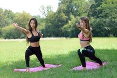 Vrouwen die yoga uitoefenen Royalty-vrije Stock Afbeelding