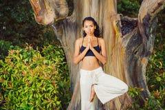 Vrouwen die yoga uitoefenen Stock Afbeeldingen