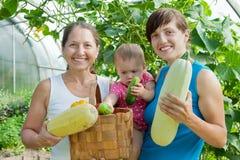 Vrouwen en baby met geoogste groenten Stock Foto's